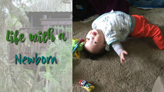 Newborn Life Part 2