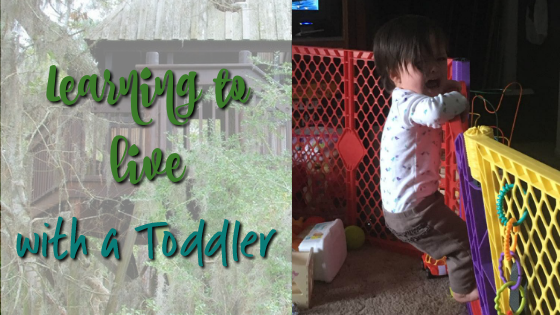 Learning to Live with a Toddler